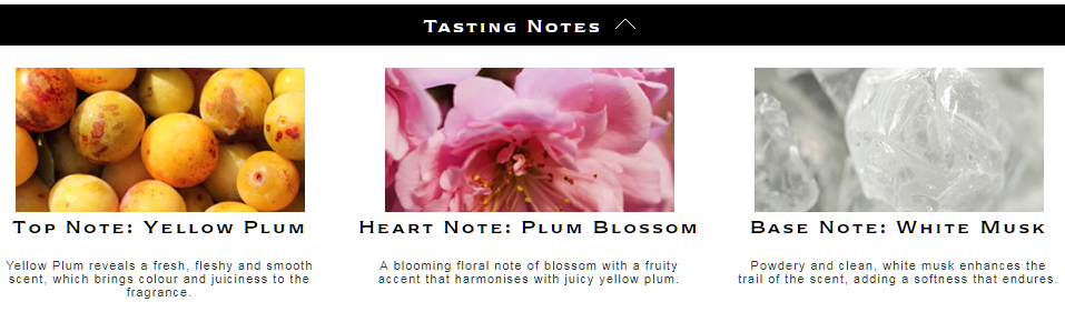 Jo Malone Plum Blossom Tasting Notes