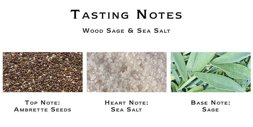 Jo Malone Wood Sage & Sea Salt Notes