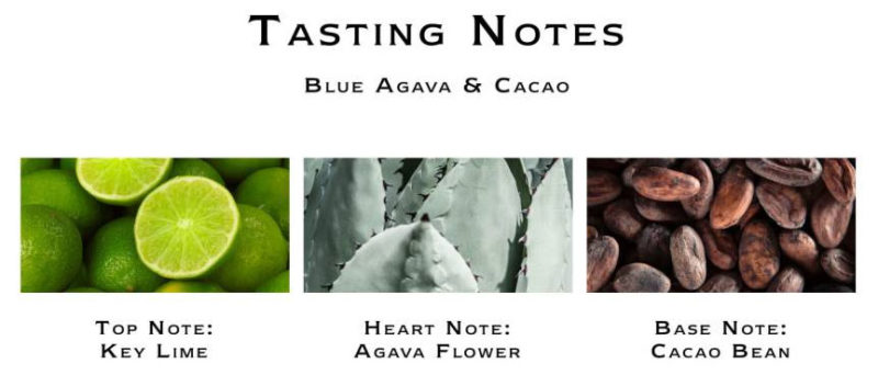 Jo Malone Blue Agava & Cacao Notes