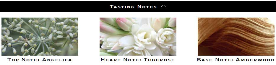 Jo Malone Limited Edition Tuberose Angelica Notes