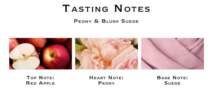 Jo Malone Peony & Blush Suede Cologne Notes