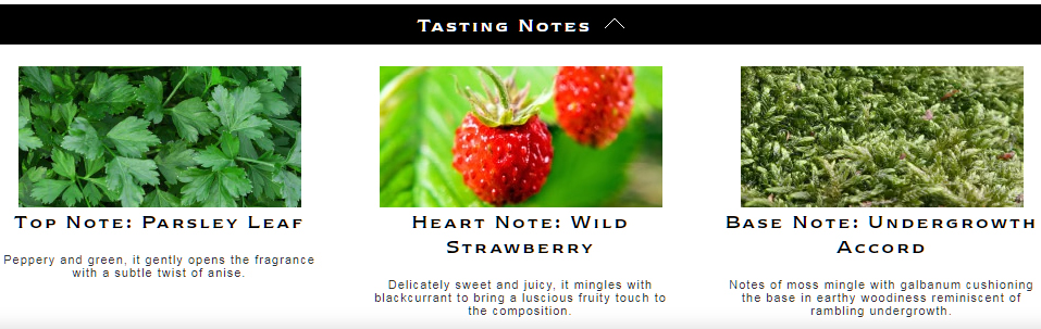 Jo Malone Wild Strawberry and Parsley Tasting Notes